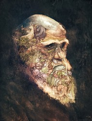 Painting : Portrait of Charles Darwin