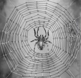 04 spiderharp