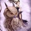 Owl Princess