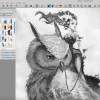 Video timelapse: Owl Princess