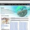 Website upgrade