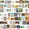 Dream To-Do List progress: 100 fan-arts!