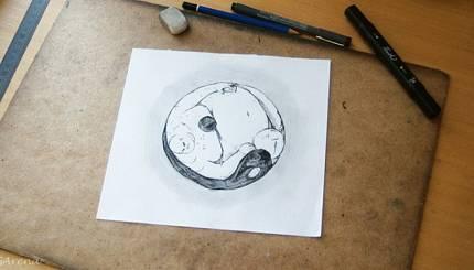 Making of: Yin Yang of World Hunger