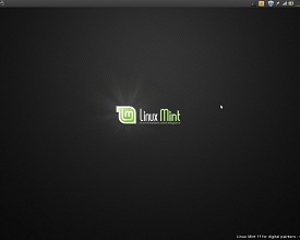 Linux Mint 11 for digital painting