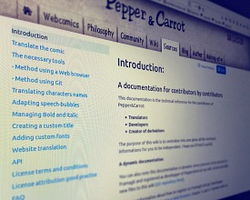 A better documentation for the translator of Pepper&Carrot
